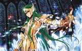 Title:Cartoon Classics - Saint Seiya wallpaper Views:15280