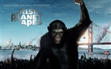 Title:Rise of the Planet of the Apes movie wallpaper Views:3176