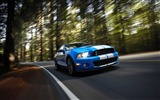 Title:Ford Shelby GT500-Cool Cars Desktop Wallpaper Selection Views:5841