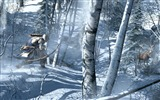 Title:Assassins Creed 3 Game HD Wallpaper 01 Views:15502