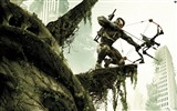 Title:Crysis 3 HD game wallpaper 01 Views:7797