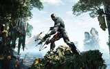Title:Crysis 3 HD game wallpaper 10 Views:5042