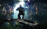 Title:Crysis 3 HD game wallpaper 11 Views:4025