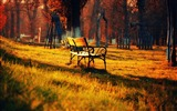 Title:Autumn season-autumn nature photography Wallpapers Views:5873
