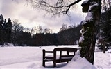 Title:bench in winter-Winter snow scenes wallpaper Views:4184