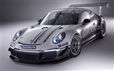 Title:2013 Porsche GT3 991 Cup Auto HD Wallpapers Views:6755