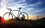 Title:Bicycle theme photography widescreen wallpaper Views:5324