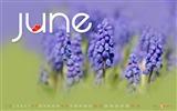 June 2013 calendar desktop themes wallpaper Wallpapers List - page 2 ...
