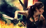 Title:2013 featured popular games HD desktop wallpaper Views:9151