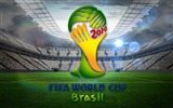 Title:2014 Brazil 20th FIFA World Cup Desktop Wallpapers Views:7685