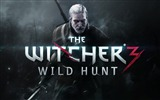 Title:THE WITCHER 3 WILD HUNT Game HD Wallpaper Views:3272